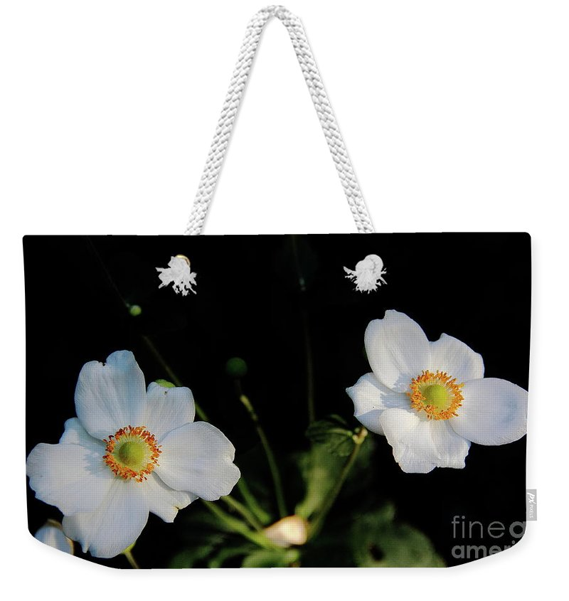 Flowers Weekender Tote Bag featuring the photograph Japanese Anemone Flower by Allen Nice-Webb