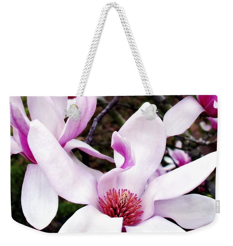 Japanese Weekender Tote Bag featuring the photograph Japanese Magnolia by Marilyn Hunt