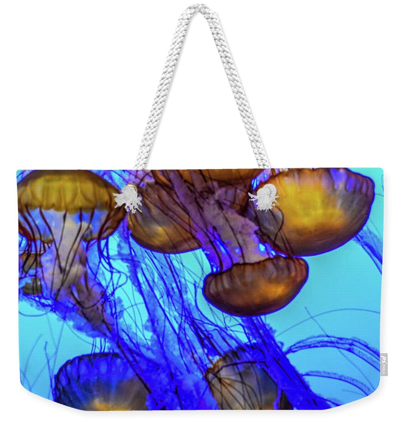 Monterey Bay Weekender Tote Bag featuring the photograph Japanese Sea Nettles by Tommy Anderson
