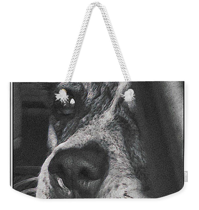 Dog Weekender Tote Bag featuring the photograph Jazz by Karen W Meyer