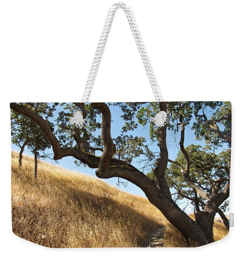 Landscape Weekender Tote Bag featuring the photograph Jazz On The Steps by Karen W Meyer