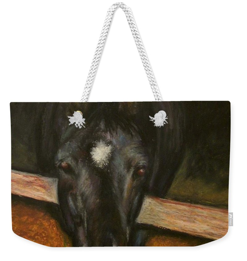 Horse Weekender Tote Bag featuring the painting Jesse by Frances Marino