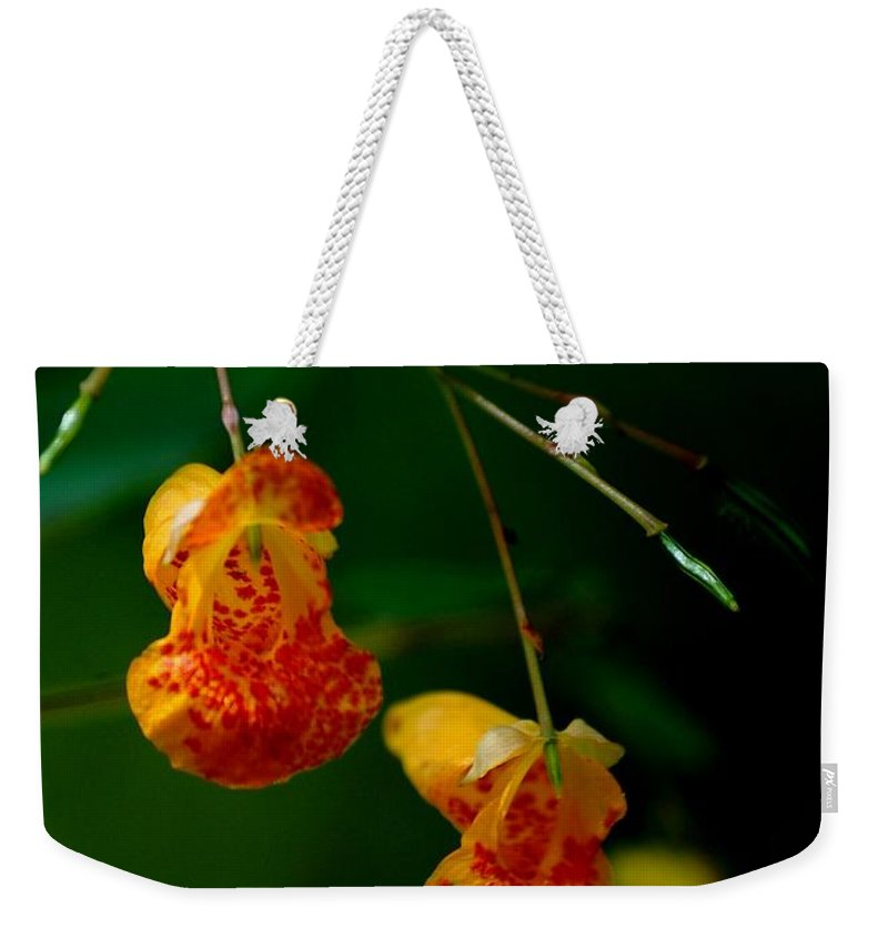 Digital Photograph Weekender Tote Bag featuring the photograph Jewel 2 by David Lane