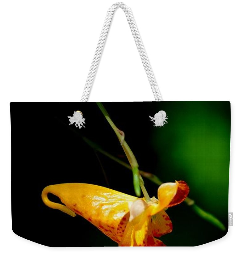 Digital Photograph Weekender Tote Bag featuring the photograph Jewel by David Lane