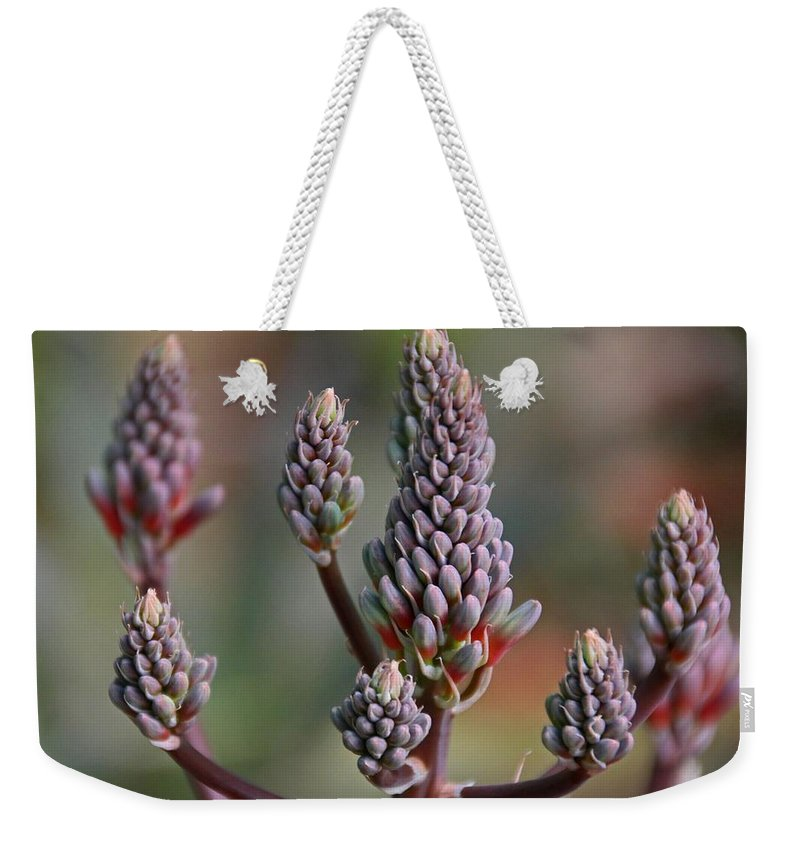 Purple Weekender Tote Bag featuring the photograph Jilted In June by Michiale Schneider