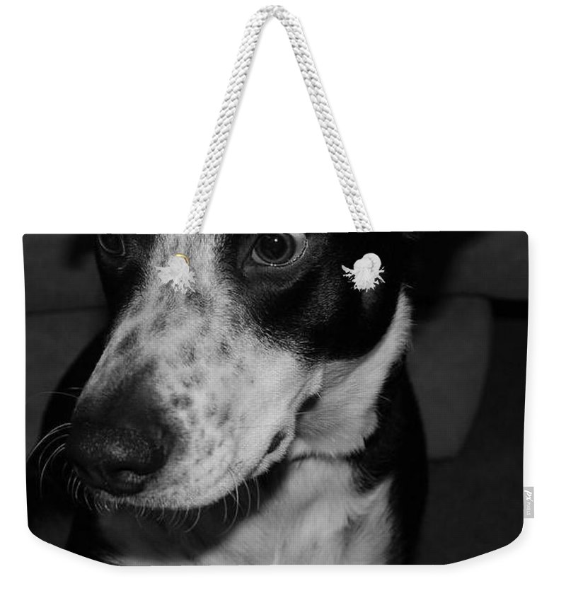 Black And White Weekender Tote Bag featuring the photograph Jimmy by Rob Hans
