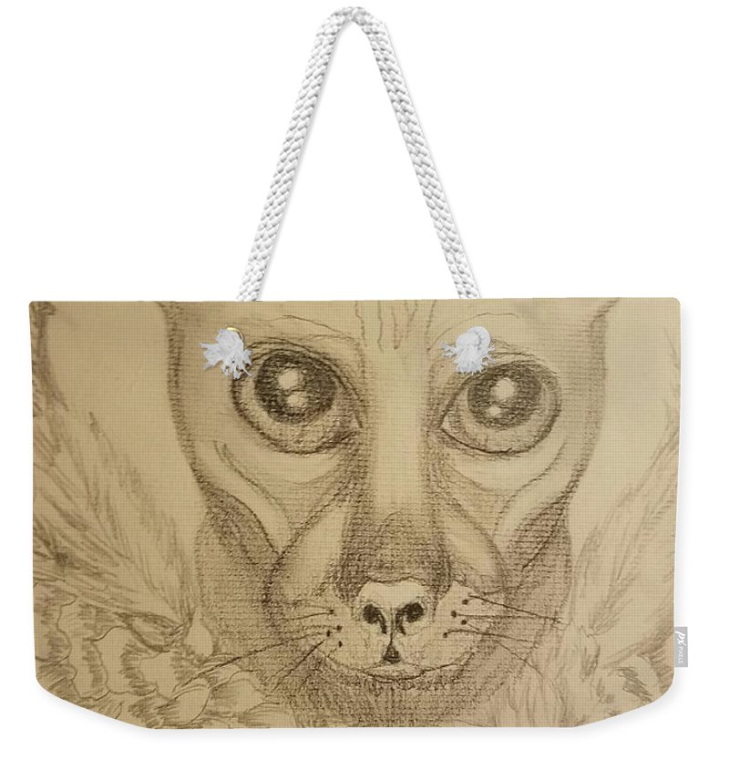 Jinx The Sphynx Weekender Tote Bag featuring the drawing Jinx The Sphynx by Maria Urso
