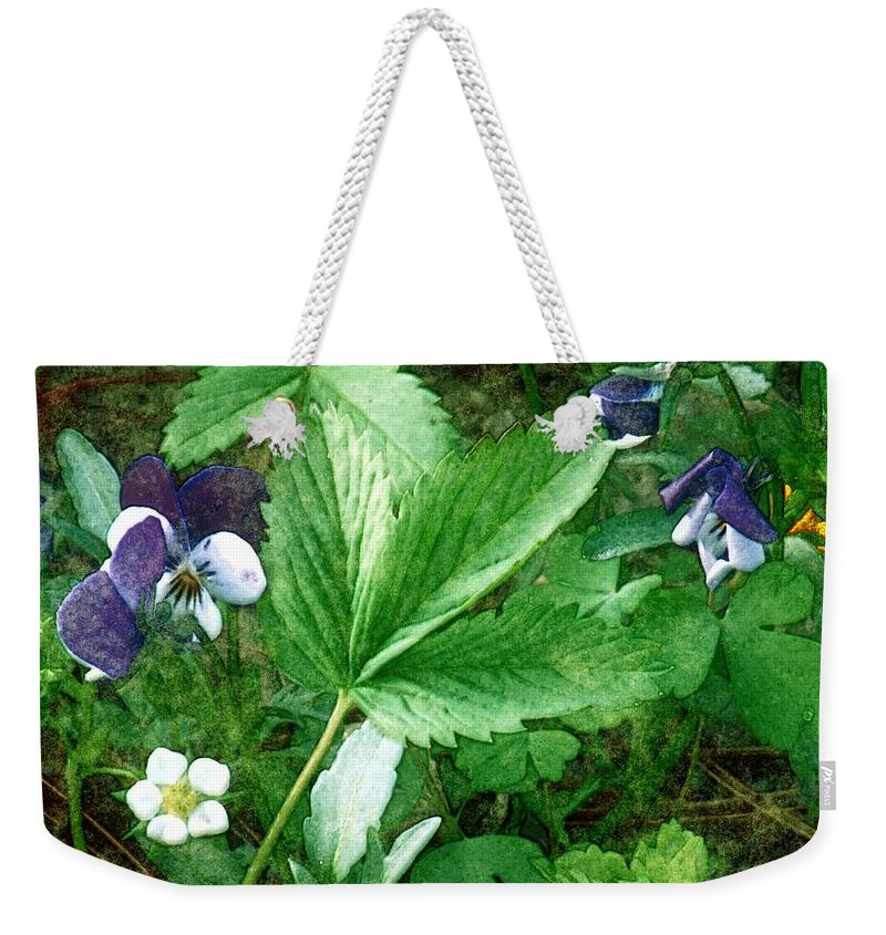 Colorado Weekender Tote Bag featuring the painting Johnnies Jump Up by RC DeWinter