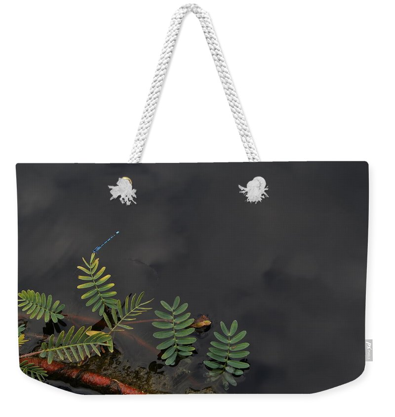 Plant Weekender Tote Bag featuring the photograph Joint Vetch With Dragon Fly by Paul Borden