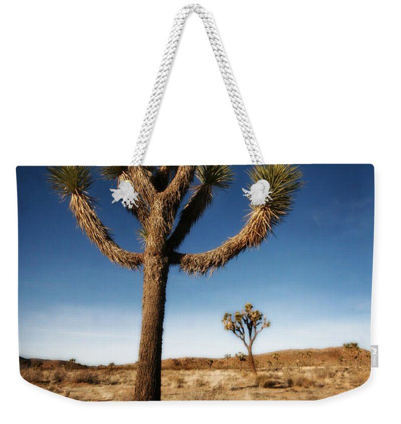 Joshua Tree Weekender Tote Bag featuring the photograph Joshua Tree 2 by Jessica Velasco