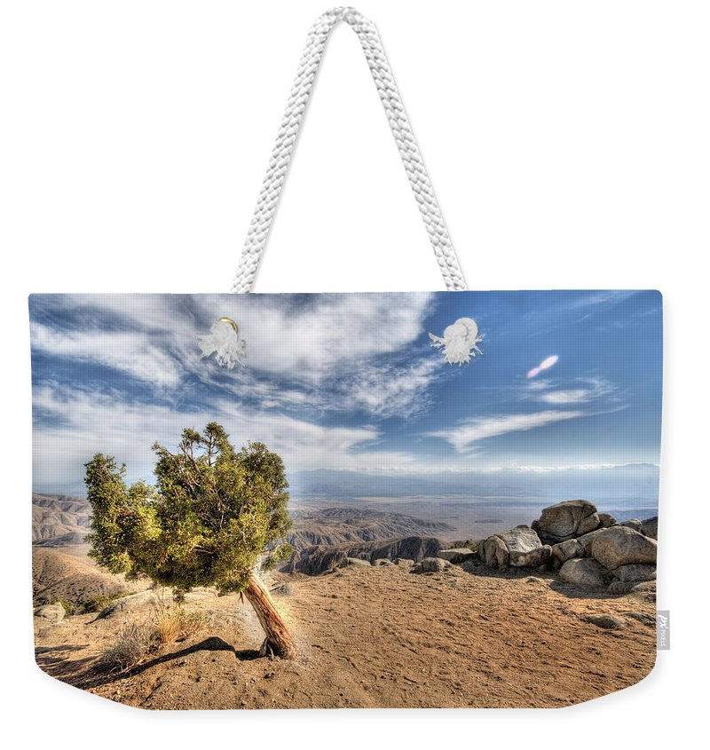 Joshua Tree National Park Weekender Tote Bag featuring the photograph Joshua Tree 39 by Jessica Velasco