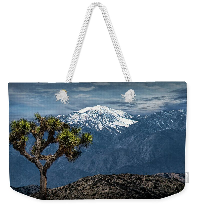 California Weekender Tote Bag featuring the photograph Joshua Tree At Keys View In Joshua Park National Park by Randall Nyhof