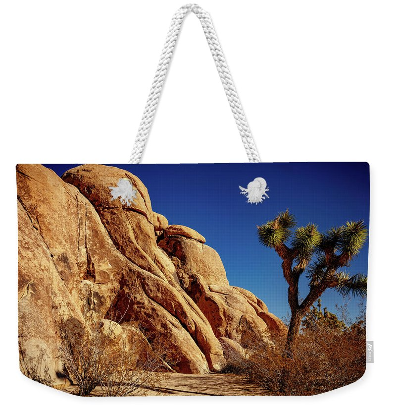 Joshua Tree Weekender Tote Bag featuring the photograph Joshua Tree Np 3 by Mike Penney
