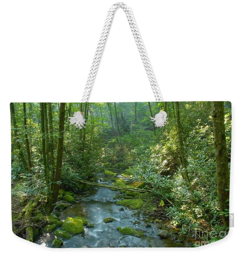 Joyce Kilmer Memorial Forest Weekender Tote Bag featuring the photograph Joyce Kilmer Memorial Forest by David Lee Thompson