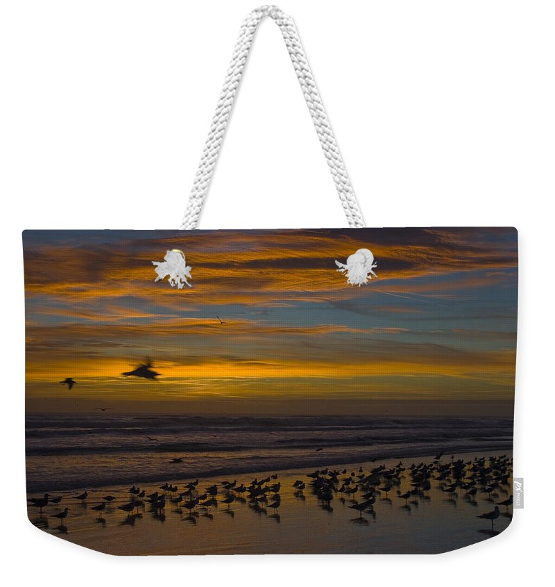 Beach Morning Sunrise Ocean Bird Birds Seagulls Gull Gulls Sand Water Wave Waves Cloud Sky Weekender Tote Bag featuring the photograph Joyful Gathering by Andrei Shliakhau