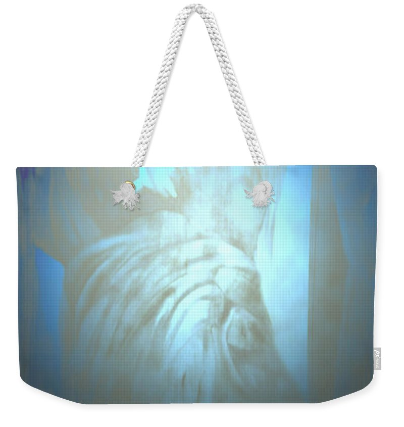 Abstract Ceasar Rome Roman Grey Gray Blue Hologram Holographic Ghost Ghostly Julius Caesar  Weekender Tote Bag featuring the photograph Julius by Andrea Lawrence