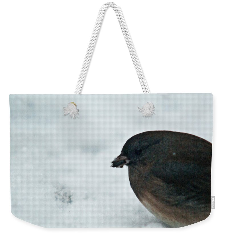 Cumberand Weekender Tote Bag featuring the photograph Junco Eating Seed In Snow by Douglas Barnett