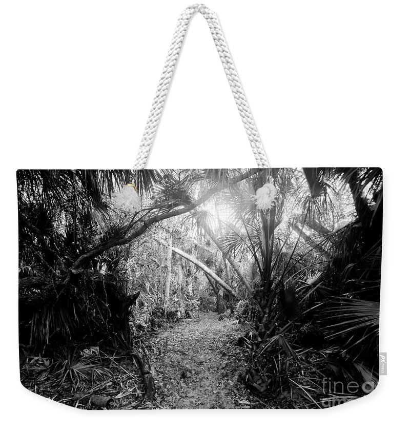 Jungle Weekender Tote Bag featuring the photograph Jungle Trail by David Lee Thompson