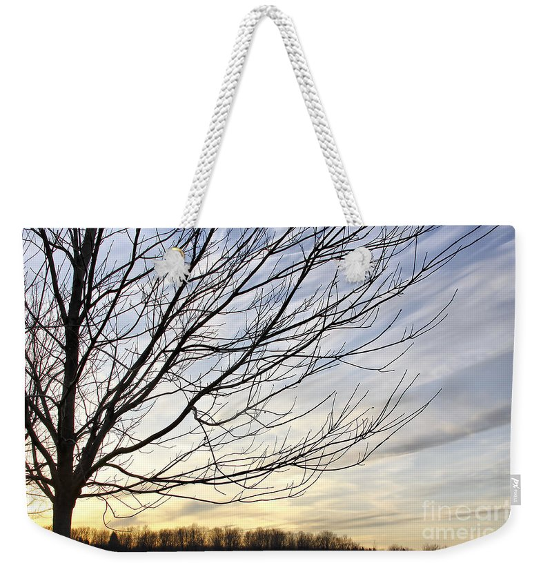 Sky Weekender Tote Bag featuring the photograph Just A Tree And Clouds by Deborah Benoit