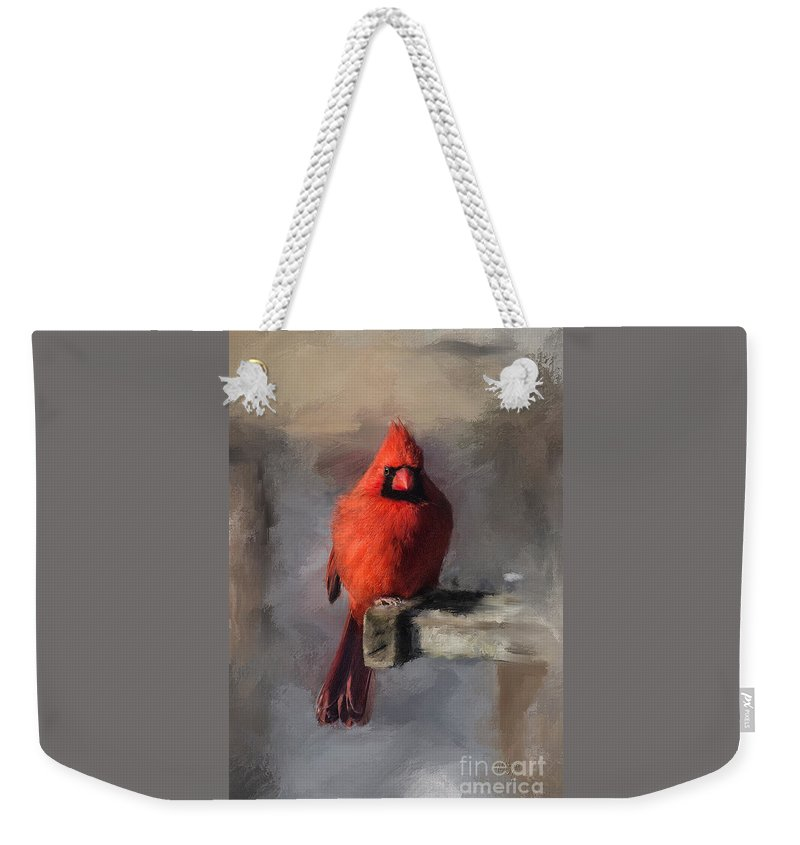 Cardinal Weekender Tote Bag featuring the digital art Just An Ordinary Day by Lois Bryan