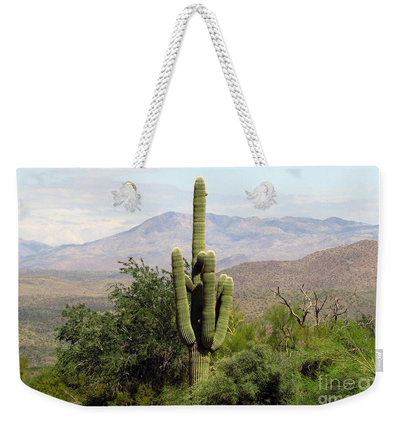 Desert Weekender Tote Bag featuring the photograph Just Arizona by Marilyn Smith
