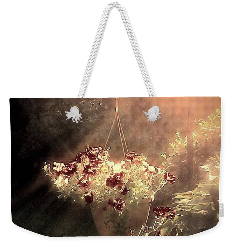 Sun Weekender Tote Bag featuring the photograph Just Dreaming by Dani McEvoy