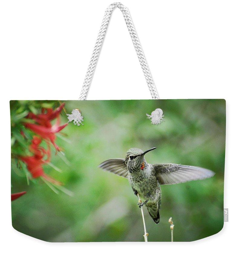 Hummingbird Weekender Tote Bag featuring the photograph Just Hummin' Along by Saija Lehtonen