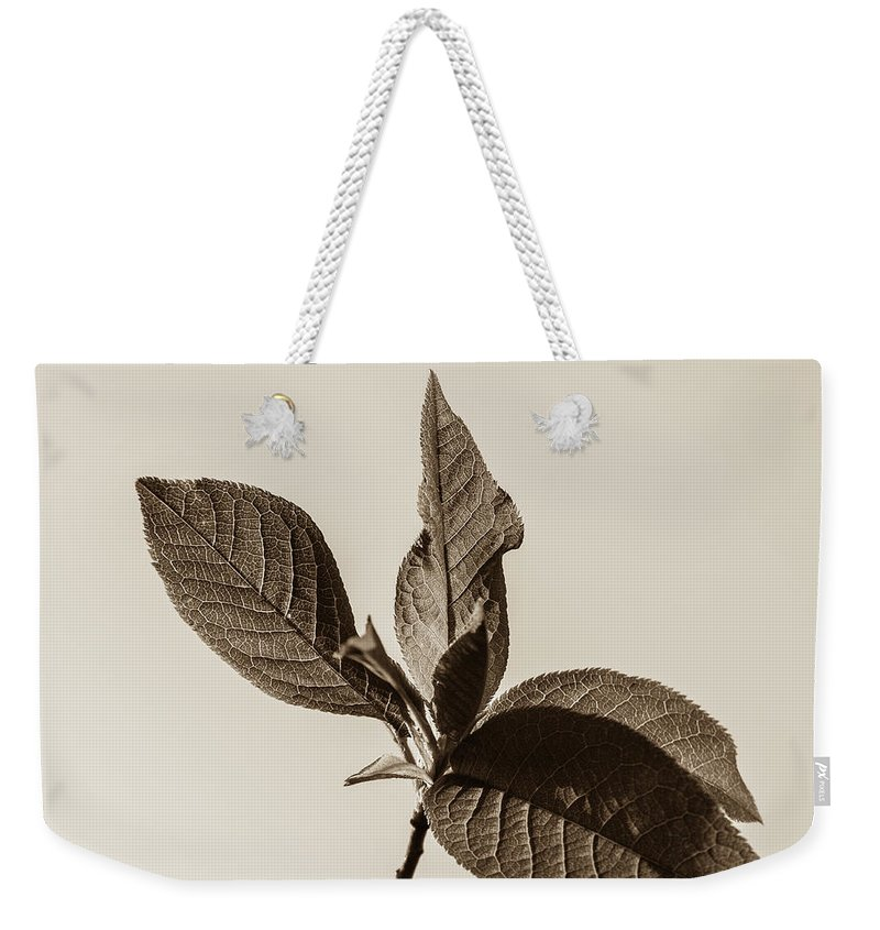 Just Leaves Weekender Tote Bag featuring the photograph Just Leaves by Yana Reint