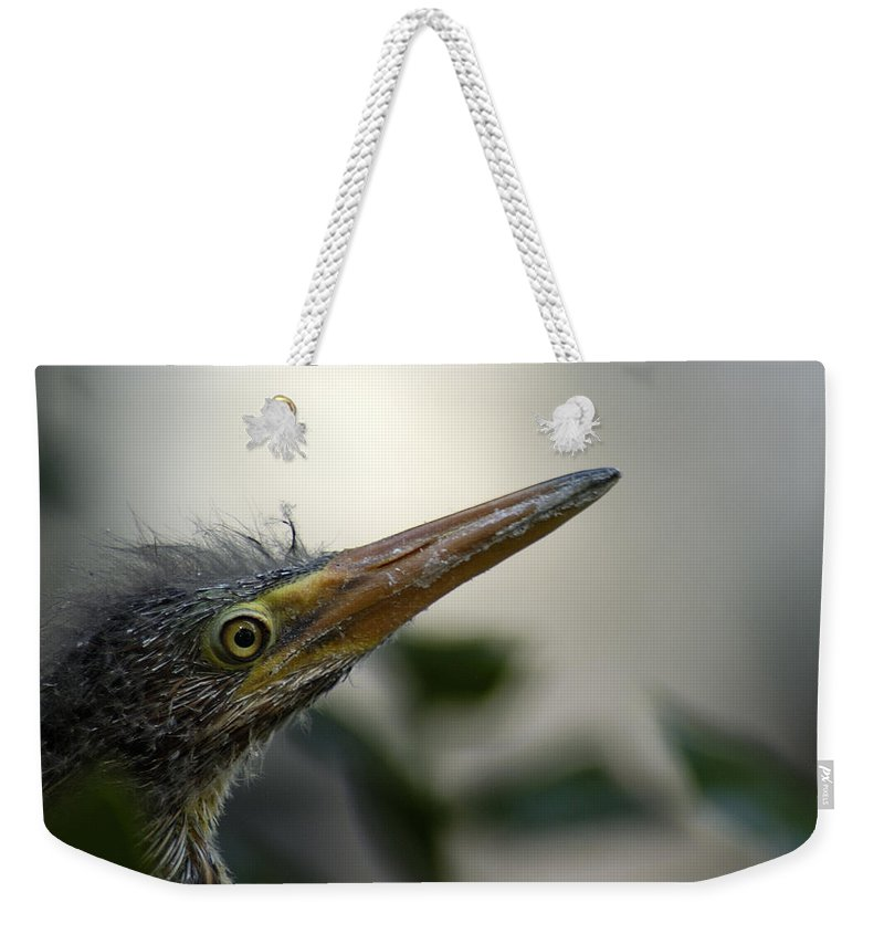 Heron Weekender Tote Bag featuring the photograph Just Love Me by D'Arcy Evans