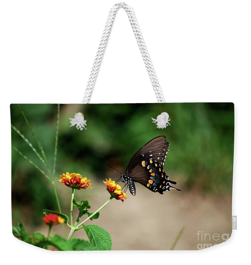 Swallowtail Weekender Tote Bag featuring the photograph Just Me And My Flower by Lori Tambakis