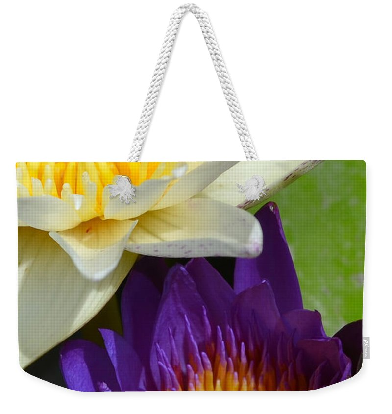 Purple Weekender Tote Bag featuring the photograph Just Opening Purple Waterlily With White - Vertical by AEC - Abundant Eight Creative