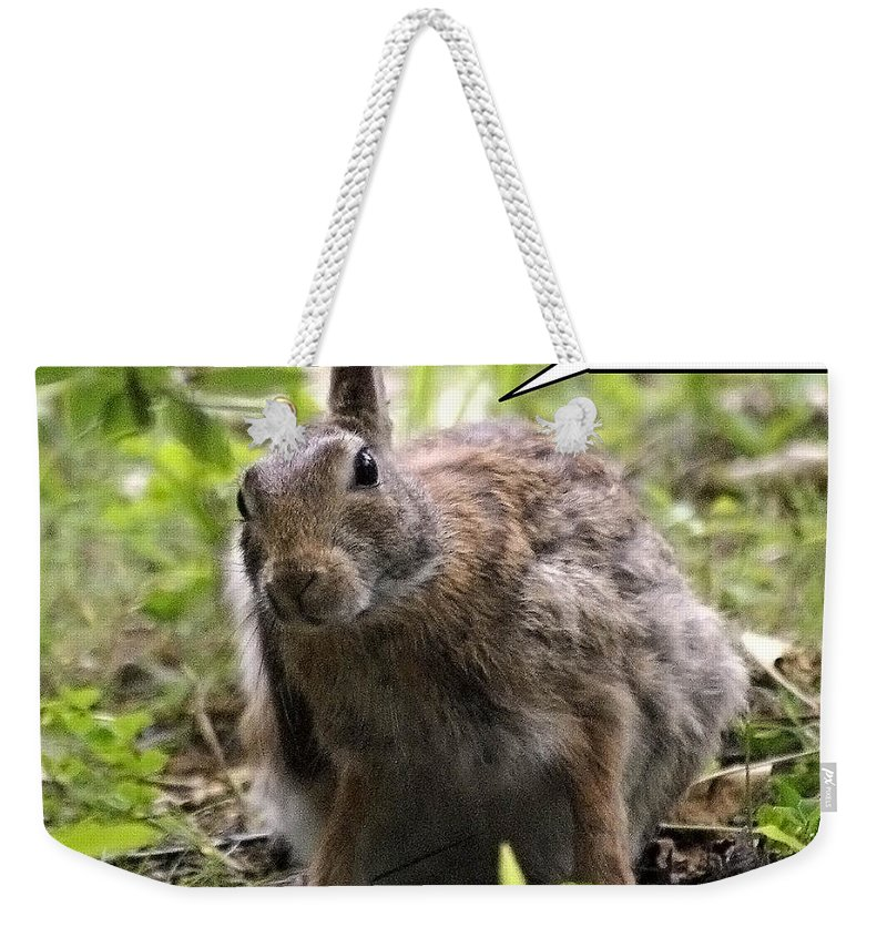 2d Weekender Tote Bag featuring the photograph Just Washed My Hare by Brian Wallace
