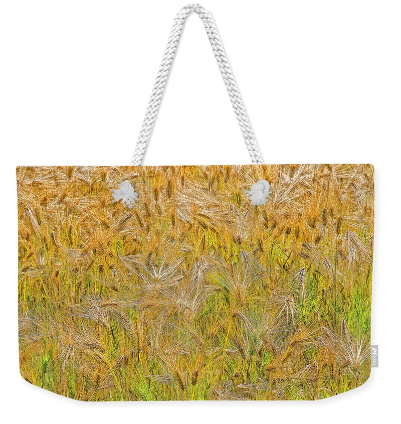 Abstract Weekender Tote Bag featuring the photograph Just Wheat by Timothy Flanigan and Debbie Flanigan Nature Exposure