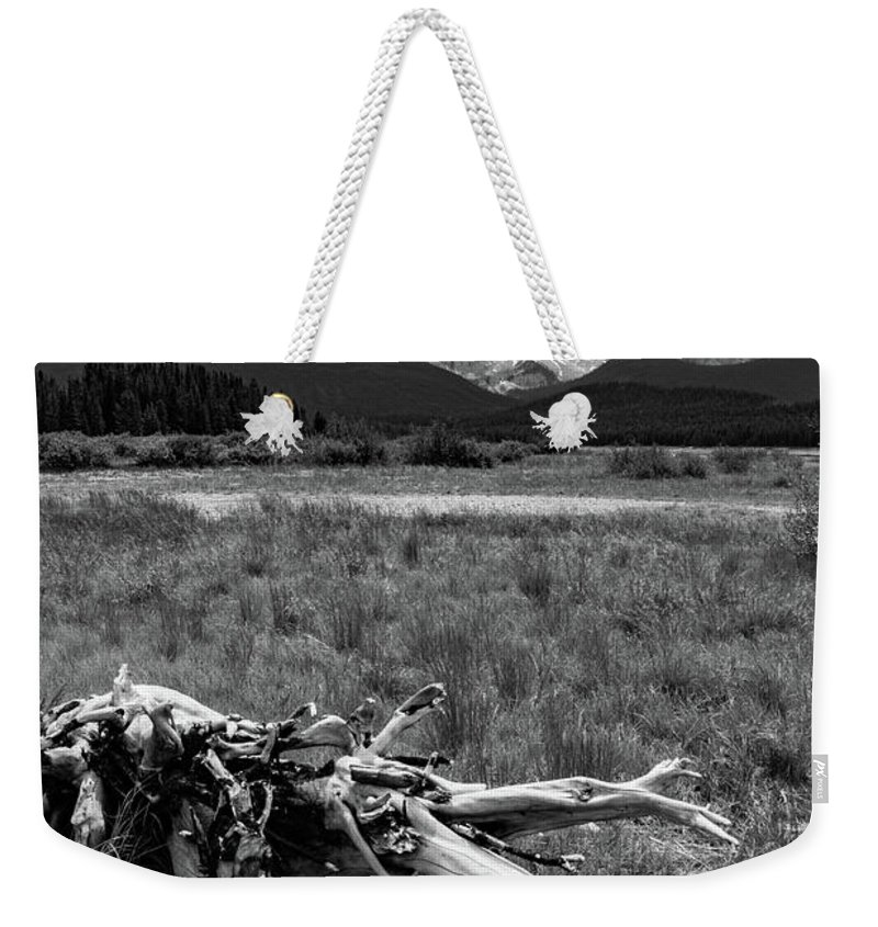 Mountains Weekender Tote Bag featuring the photograph Kananaskis Driftwood by Shelly Priest