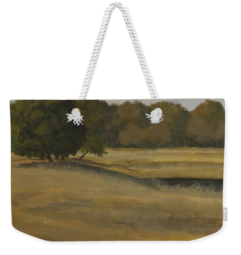 Landscape Weekender Tote Bag featuring the painting Kanha Meadows by Mandar Marathe