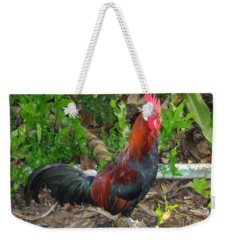 Rooster Weekender Tote Bag featuring the photograph Kauai Rooster by Mary Deal
