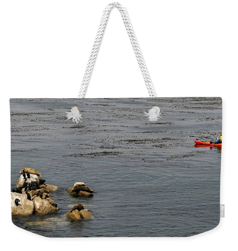 Animal Weekender Tote Bag featuring the photograph Kayakers And Seal Lions by Marilyn Hunt