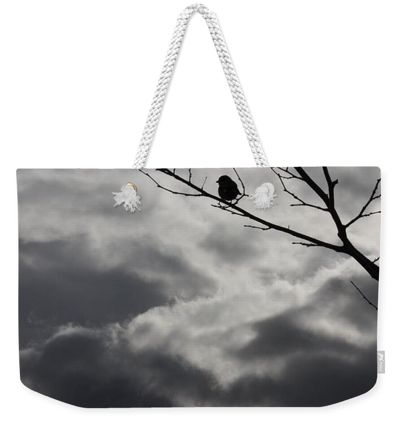 Storm Weekender Tote Bag featuring the photograph Keeping Above The Storm by Carol Groenen