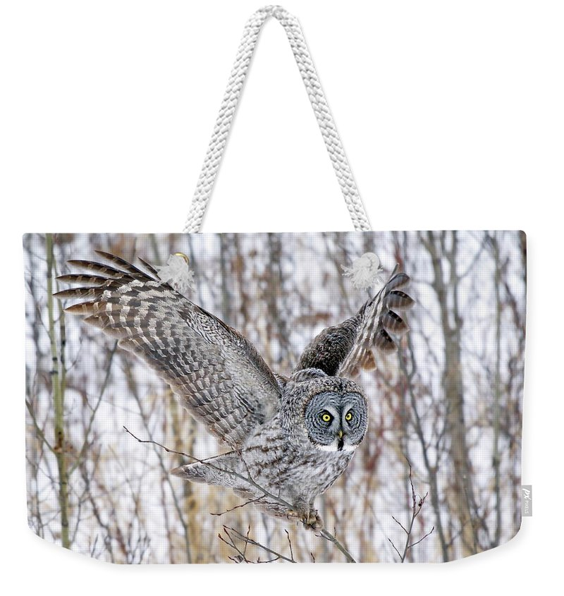 Nature Weekender Tote Bag featuring the photograph Keeping Balance by Crystal Massop