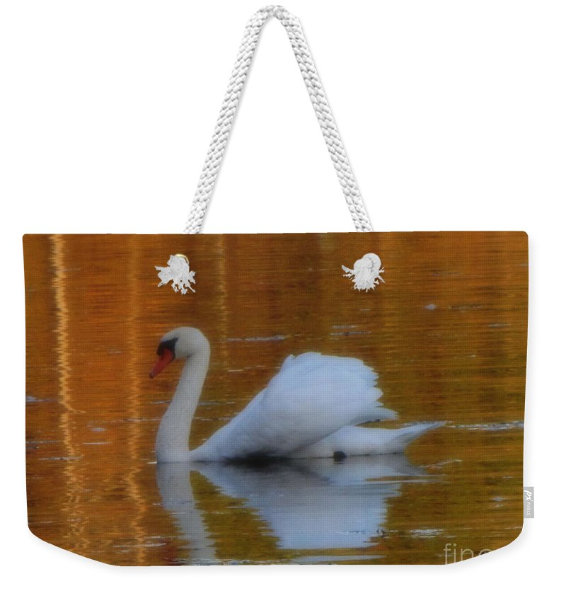 Swan Weekender Tote Bag featuring the photograph Kensingtons Swan 1 by September Stone