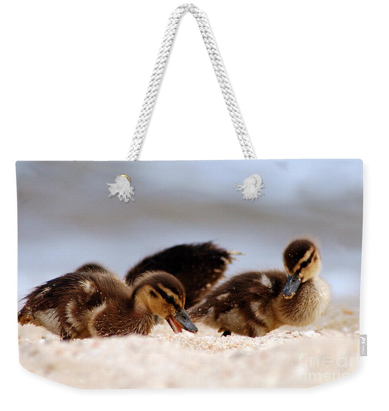 Clay Weekender Tote Bag featuring the photograph Kids Will Play by Clayton Bruster
