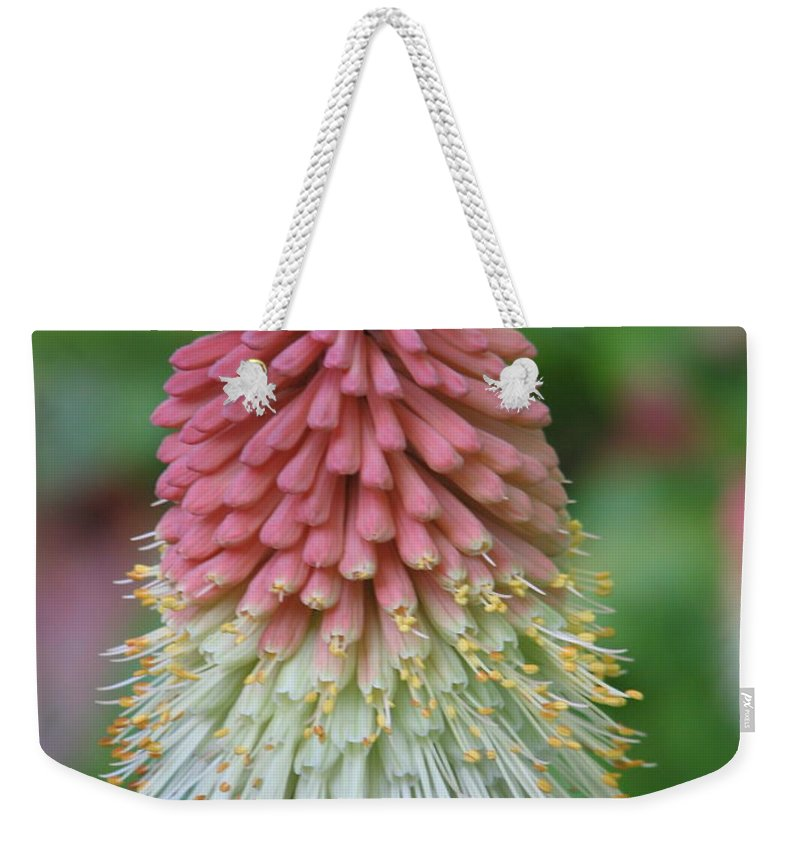 Flower Weekender Tote Bag featuring the photograph Kilmokea by Kelly Mezzapelle
