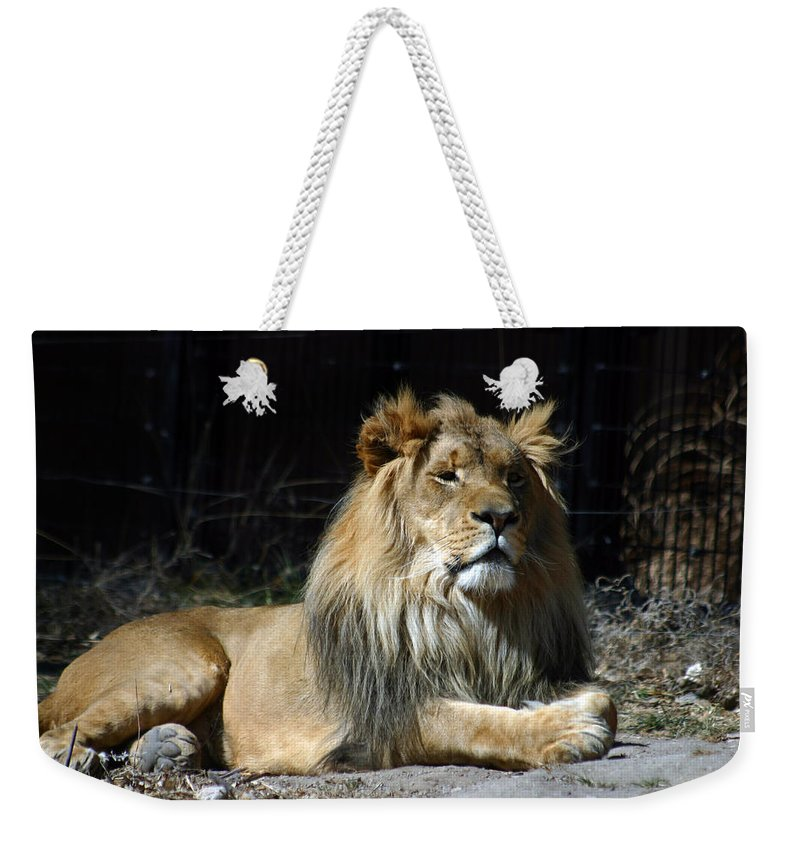 Lion Weekender Tote Bag featuring the photograph King by Anthony Jones