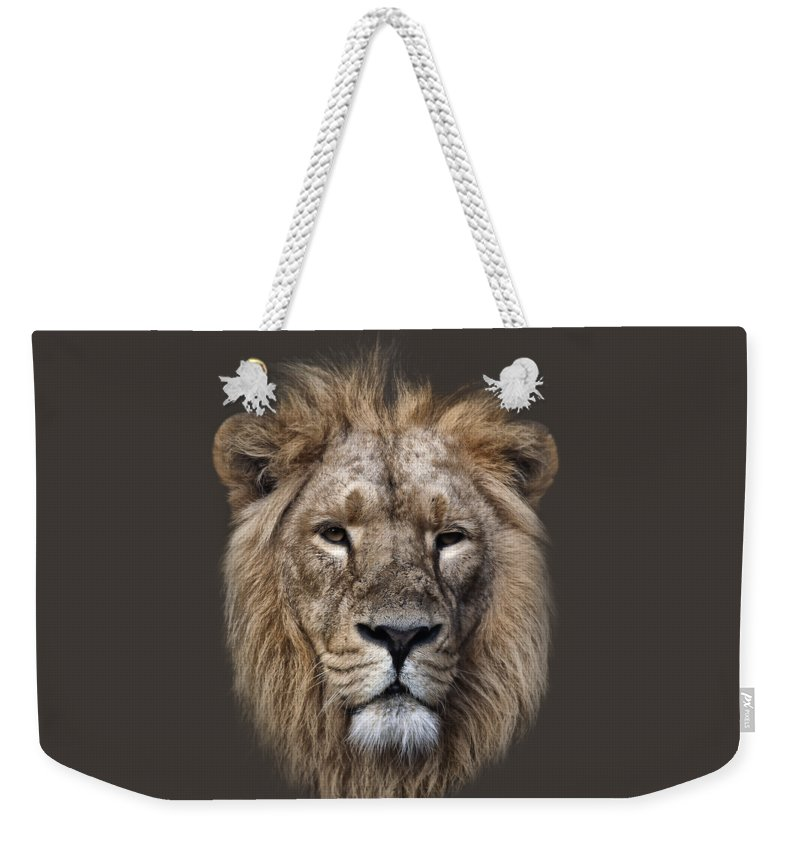 Panthera Leo Weekender Tote Bag featuring the photograph King Of The Jungle by Rob Lester