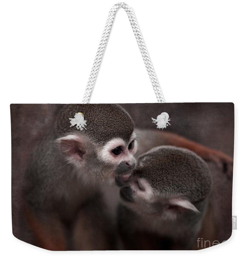 Monkeys Weekender Tote Bag featuring the photograph Kiss Me by Angel Ciesniarska