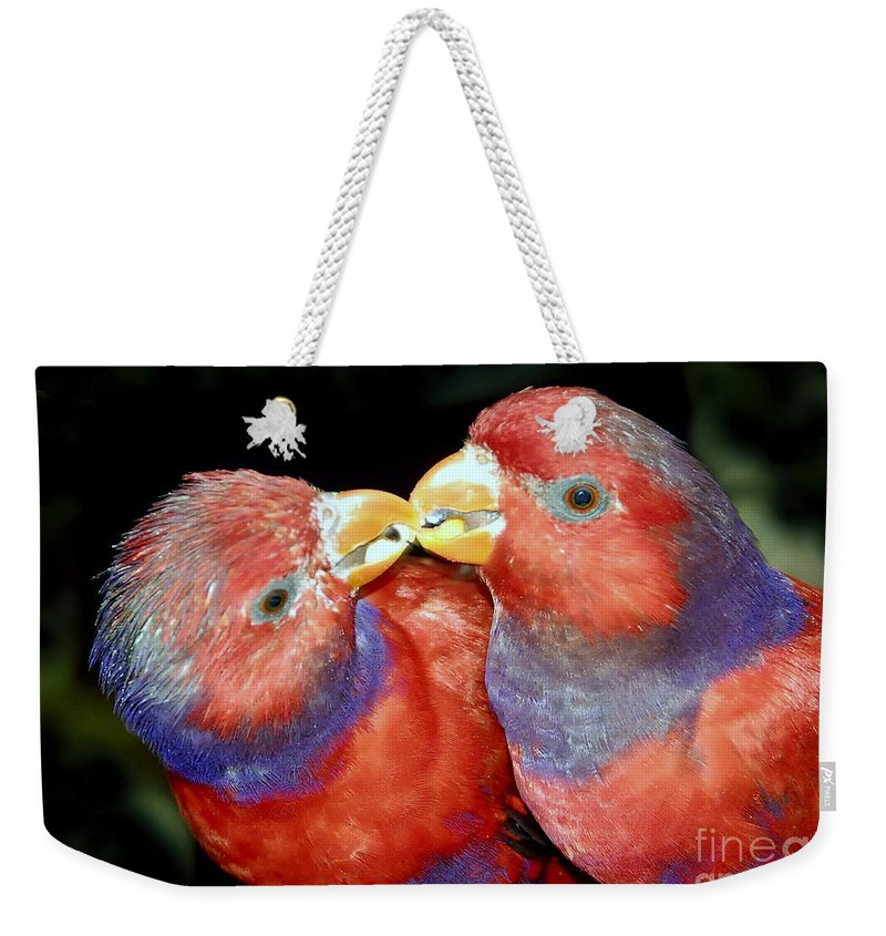 Kissing Weekender Tote Bag featuring the photograph Kissing Birds by David Lee Thompson
