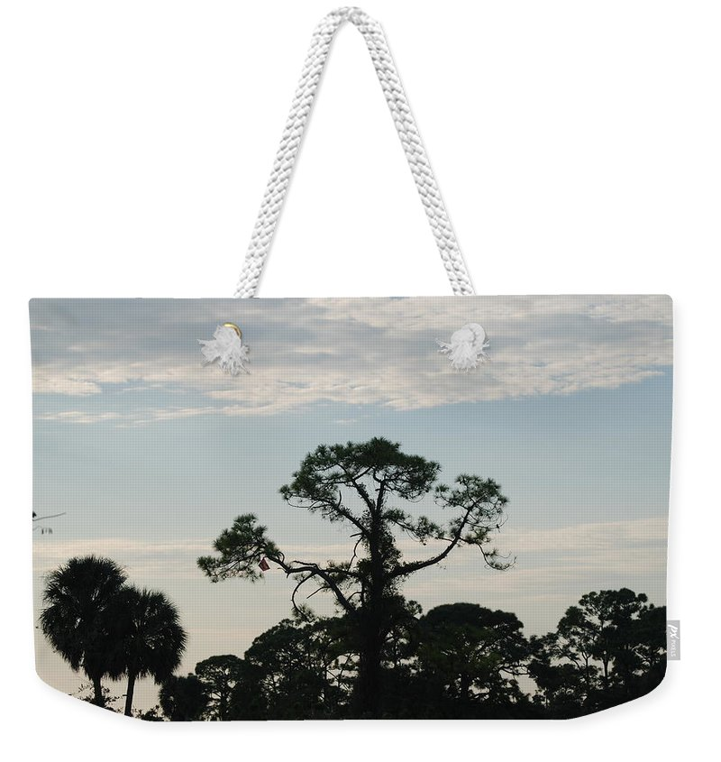 Kite Weekender Tote Bag featuring the photograph Kite In The Tree by Rob Hans
