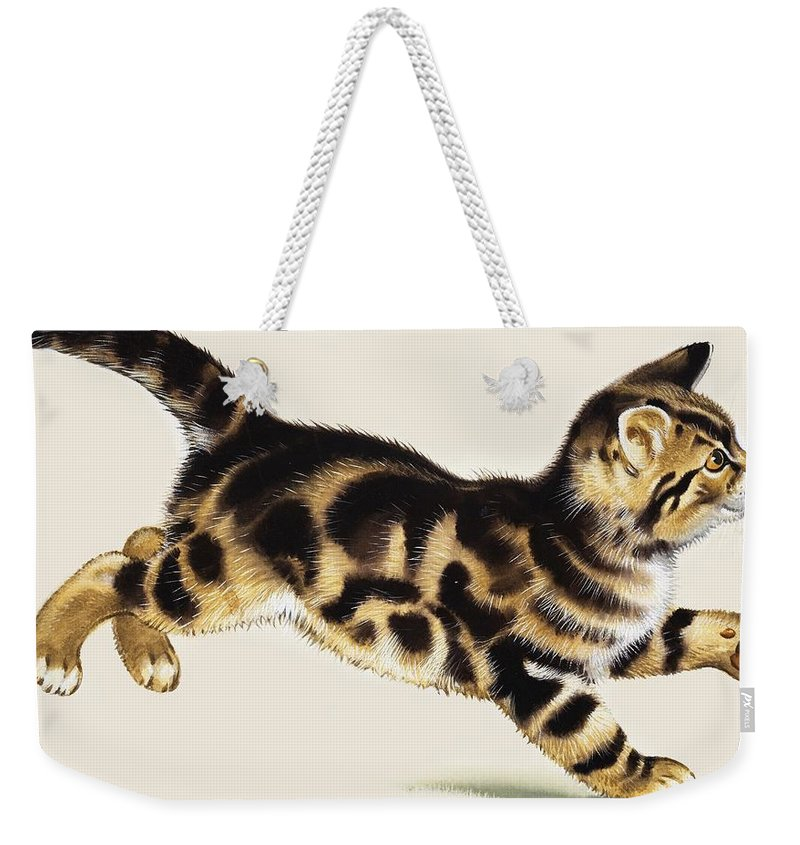 Kitten Weekender Tote Bag featuring the painting Kitten by English School