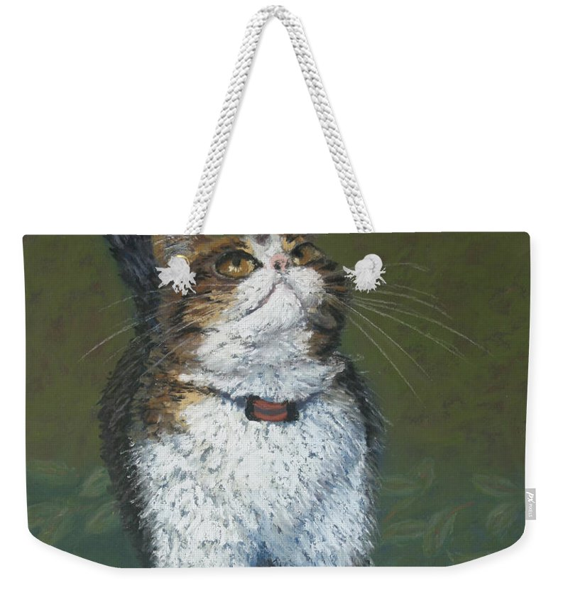 Cat Weekender Tote Bag featuring the painting Kitty And Her Dragonfly by Minaz Jantz
