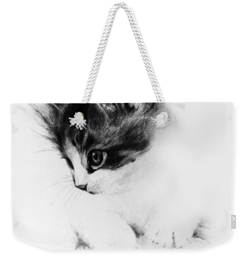 Kitten Weekender Tote Bag featuring the drawing Kitty by Rachel Christine Nowicki